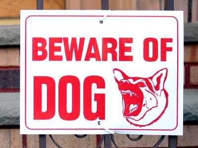 Beware of dog custom sign